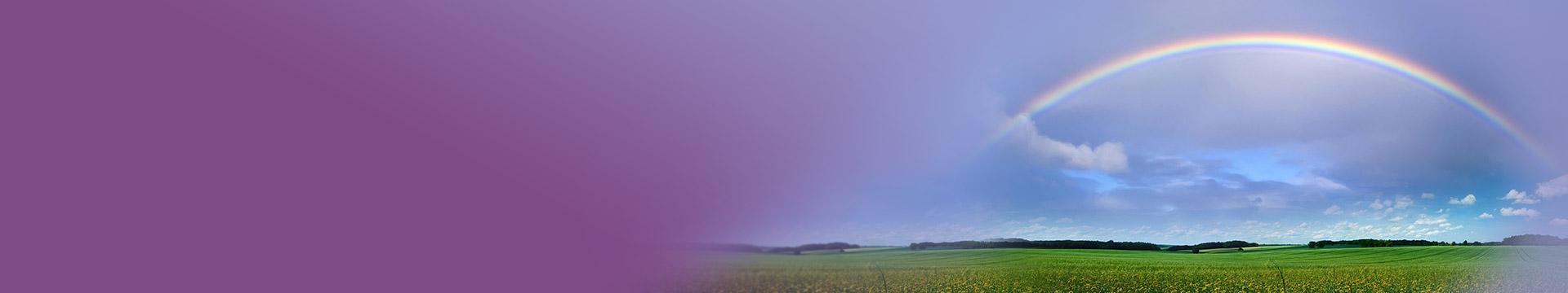 print-purple